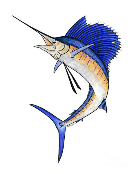 Wall Art - Mixed Media - Watercolor Sailfish by Carol Lynne