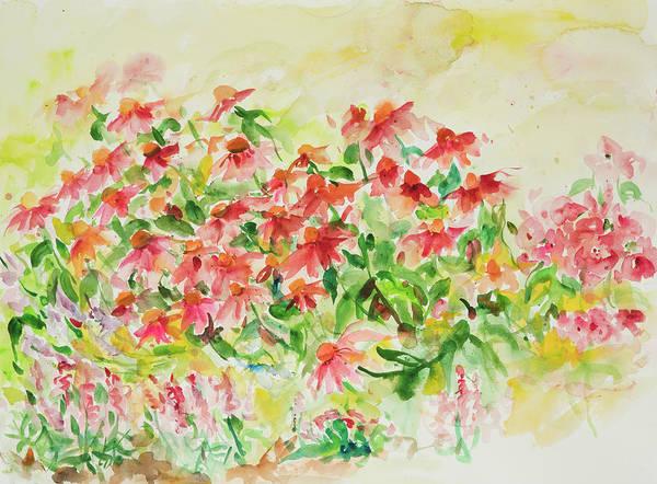 Coneflower Painting - Watercolor Series 9 by Ingrid Dohm