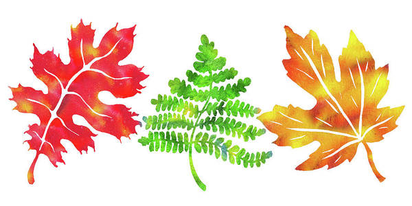 Painting - Watercolor Silhouettes Fall Leaves by Irina Sztukowski