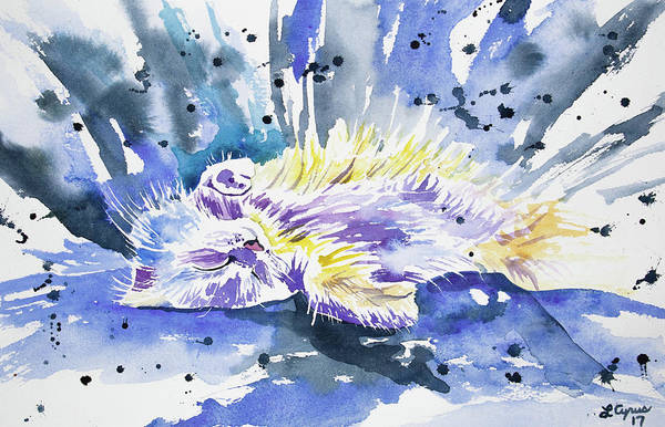 Painting - Watercolor - Sleeping Cat by Cascade Colors