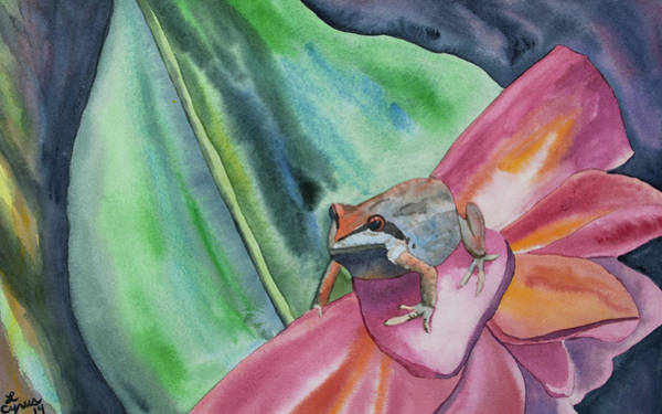 Painting - Watercolor - Small Tree Frog On A Colorful Flower by Cascade Colors