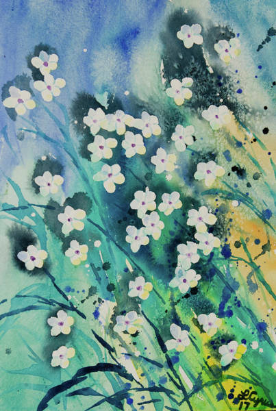 Painting - Watercolor - Small White Flowers With Aqua Blue Background by Cascade Colors