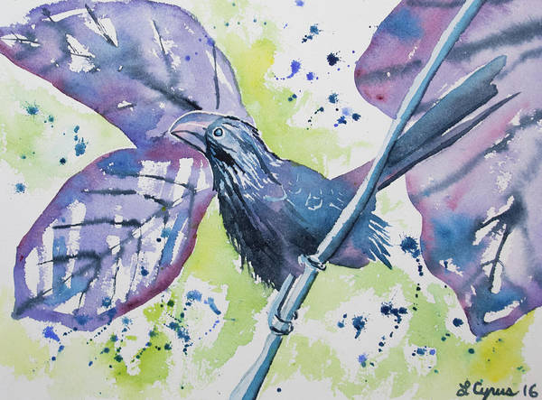 Painting - Watercolor - Smooth-billed Ani by Cascade Colors