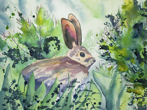 Painting - Watercolor - Snowshoe Hare In The Summer by Cascade Colors