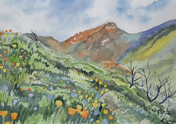 Kings Lynn Wall Art - Painting - Watercolor - Springtime Above King's Canyon by Cascade Colors