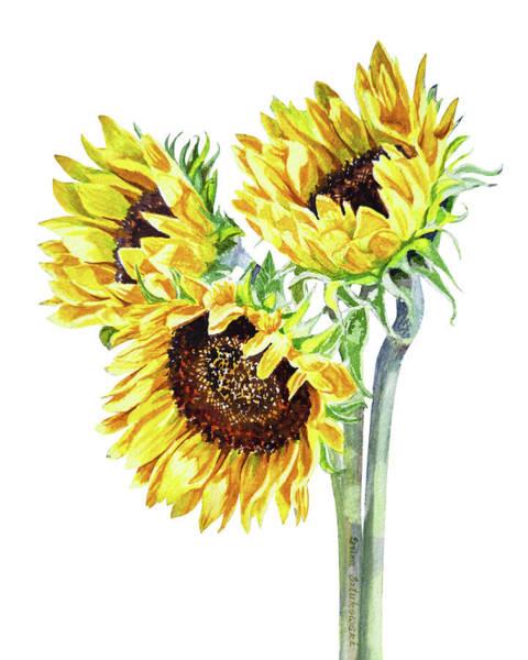 Painting - Watercolor Sunflowers Bouquet  by Irina Sztukowski