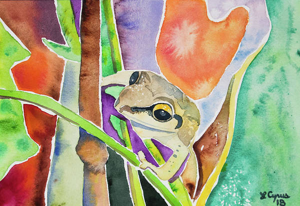 Painting - Watercolor - Tree Frog At Maquipucuna Ecuador by Cascade Colors