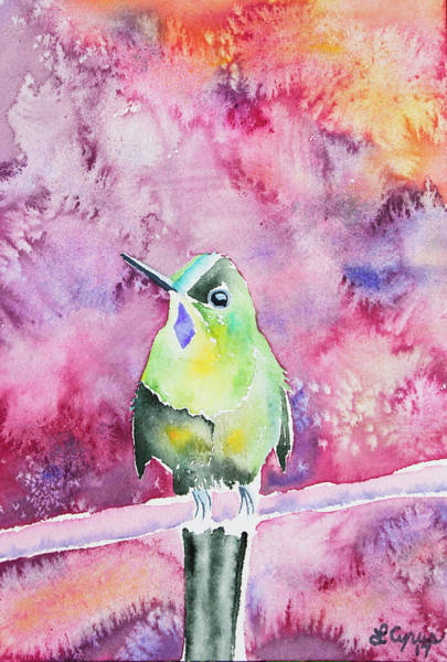 Painting - Watercolor - Violet-tailed Sylph by Cascade Colors
