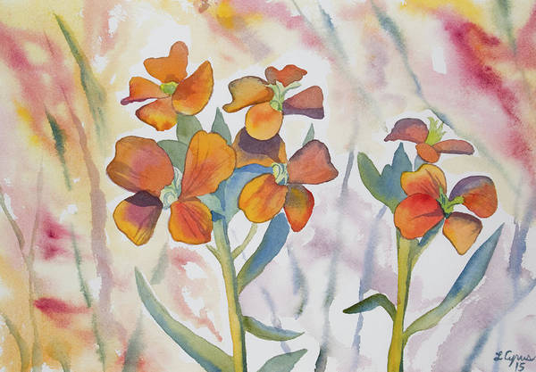 Painting - Watercolor - Wallflower Wildflowers by Cascade Colors