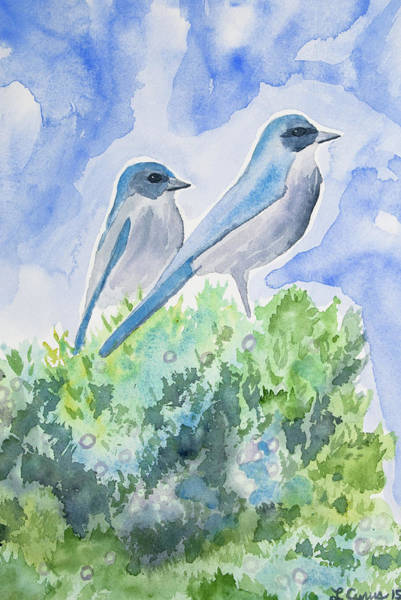 Painting - Watercolor - Western Scrub Jays And Juniper by Cascade Colors