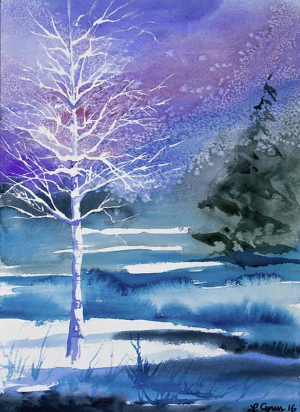 Painting - Watercolor - Winter Aspen by Cascade Colors