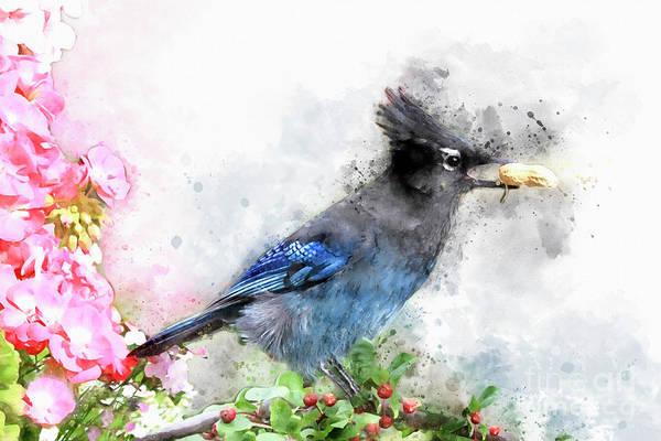 Digital Art - Watercolored Steller's Jay  by Teresa Zieba
