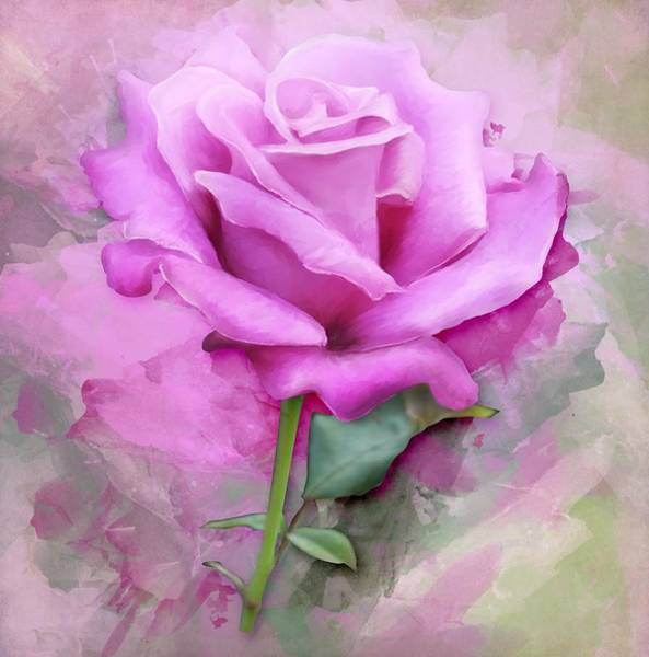Painting - Watercolour Pastel Lilac Rose by Shabby Chic and Vintage Art