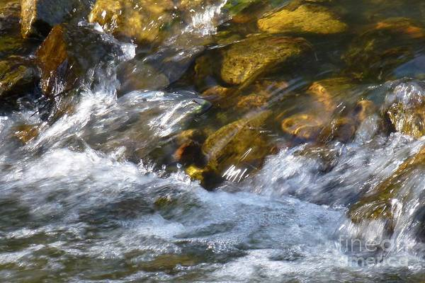 Photograph - Watercourse by Jean Bernard Roussilhe