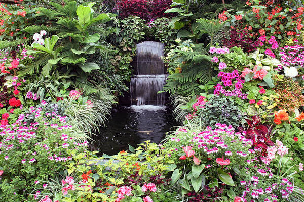 John Hancock Photograph - Waterfall And Koi Pond At Butchart Gardens. by John Hancock