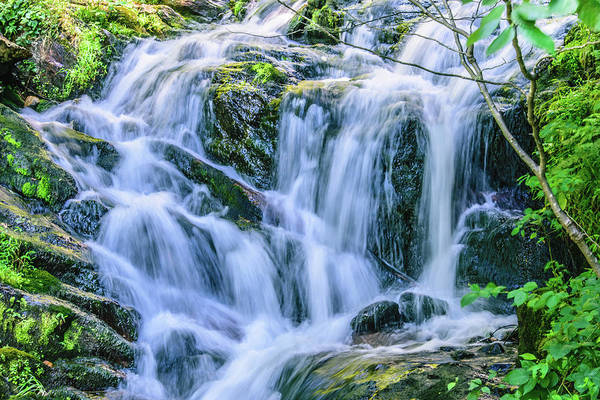 Photograph - Waterfall At Amicalola Falls by Keith Smith