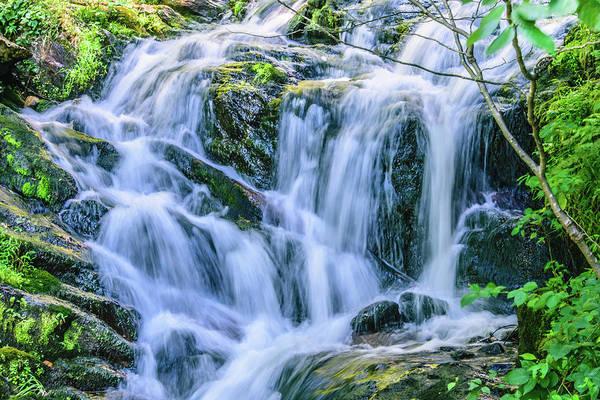 Photograph - Waterfall At Amicalola Falls by Keith Smith