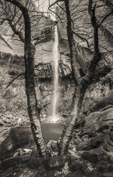 Photograph - Waterfall At Upper Emerald Pool by Owen Weber