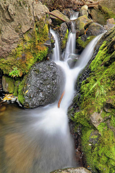 Photograph - Waterfall Atop Wolf Creek Pass - Colorado - Nature by Jason Politte