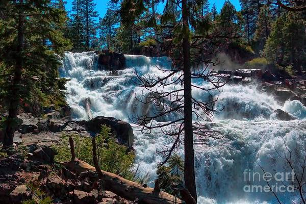 Photograph - Waterfall Between The Trees by Joe Lach
