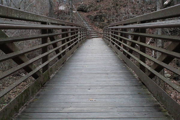 Wall Art - Photograph - Waterfall Bridge by Weathered Wood