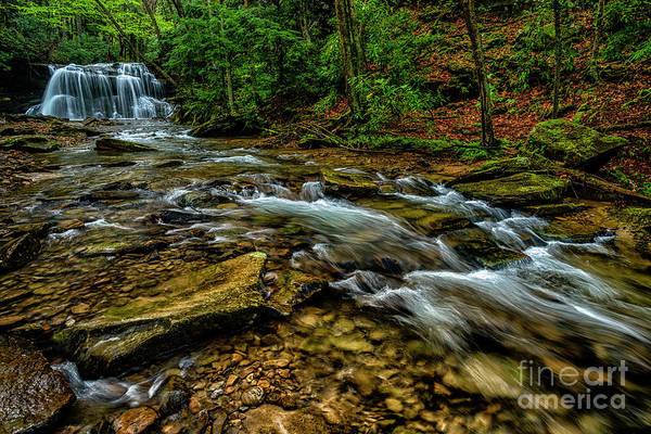 Photograph - Waterfall Holly River State Park by Thomas R Fletcher