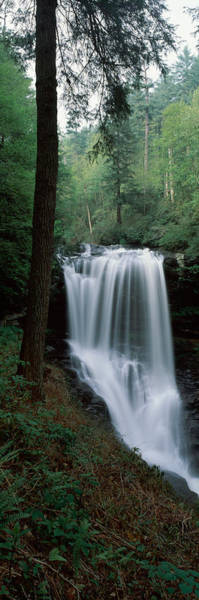 Nantahala Photograph - Waterfall In A Forest, Dry Falls by Panoramic Images