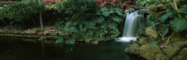 Lanai Photograph - Waterfall In A Forest, Lanai, Maui by Panoramic Images