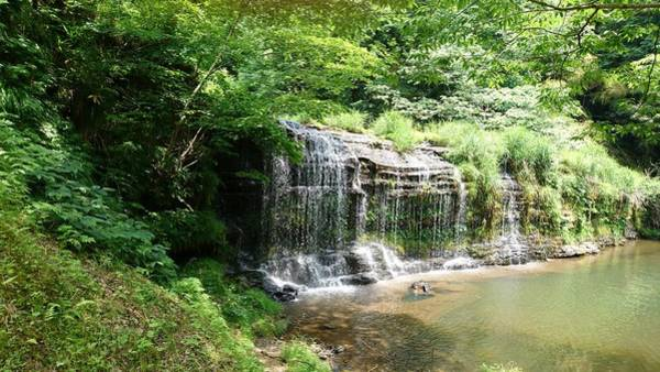 Wall Art - Photograph - Waterfall In Oyabe2 by Shunsuke Kanamori