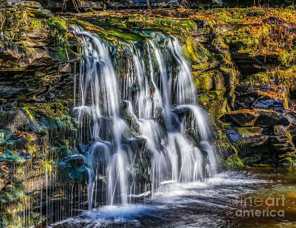 Photograph - Waterfall In The Glen by Nick Zelinsky