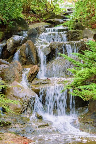 Canada Wall Art - Photograph - Waterfall In The Vandusen Botanical Garden 1 by Viktor Birkus