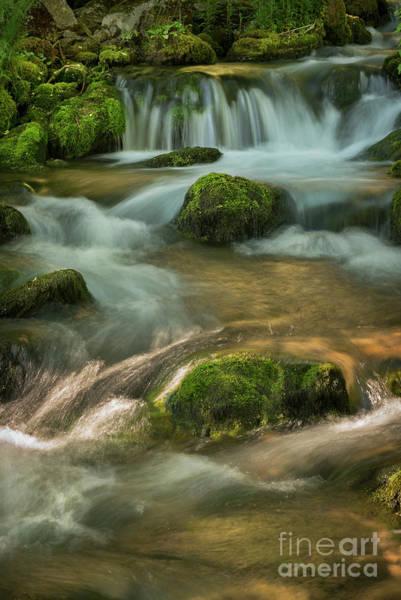 Artsy Photograph - Waterfall by Jelena Jovanovic