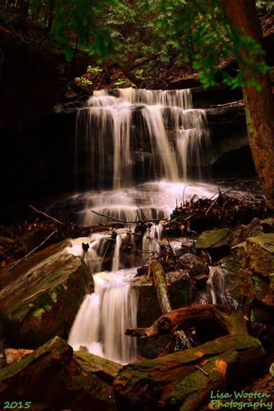 Photograph - Waterfall Mcconnells Mills State Park by Lisa Wooten
