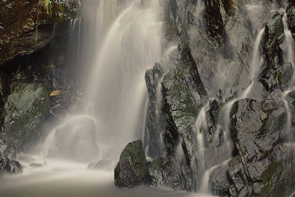 Steve Harris Wall Art - Photograph - Waterfall Mist by Steve Harris