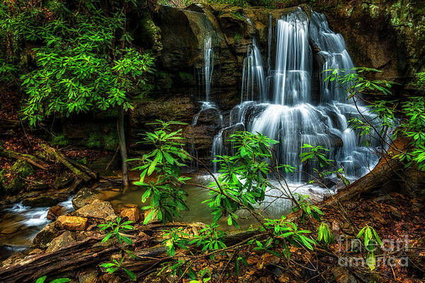 Photograph - Waterfall On Back Fork by Thomas R Fletcher