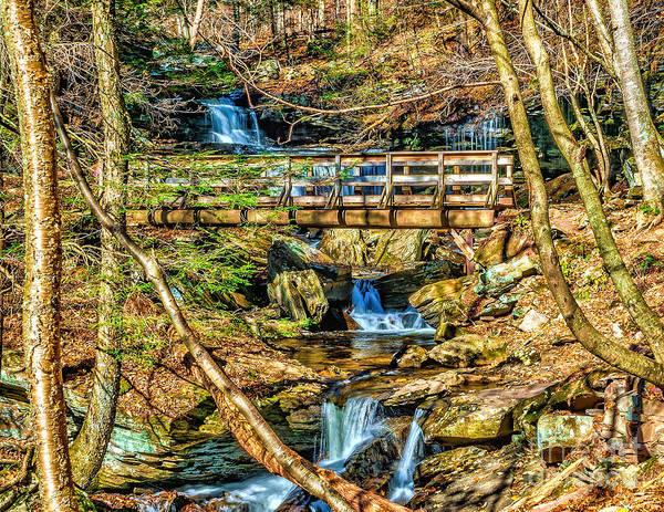 Photograph - Waterfall Trail Bridge by Nick Zelinsky