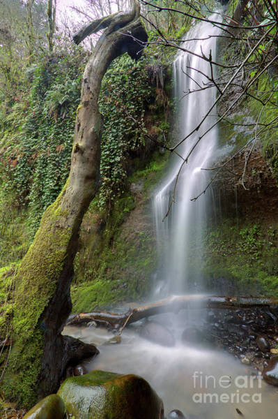 Shutter Photograph - Waterfall Troutdale Oregon by Dustin K Ryan