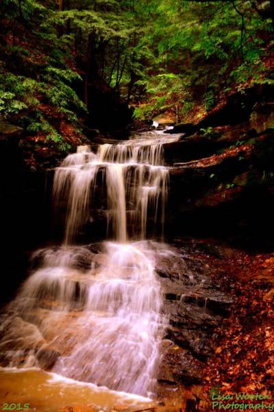 Photograph - Waterfall Vertical by Lisa Wooten