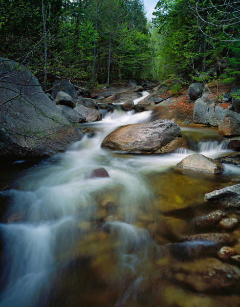Baxter State Park Photograph - Waterfalls And Rocks On Abol Stream by Panoramic Images