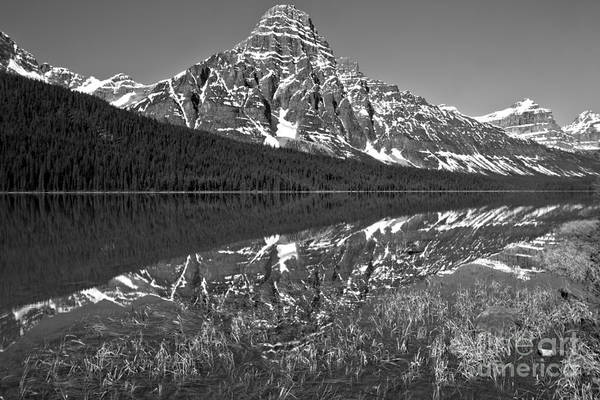 Photograph - Waterfowl Lakes Reflections Black And White by Adam Jewell