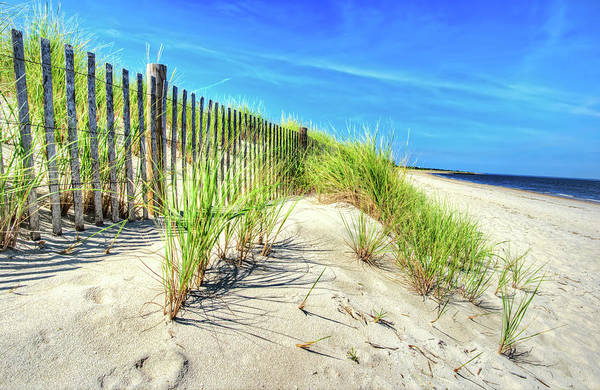 Photograph - Waterfront Sand Dune And Grass by Gary Slawsky