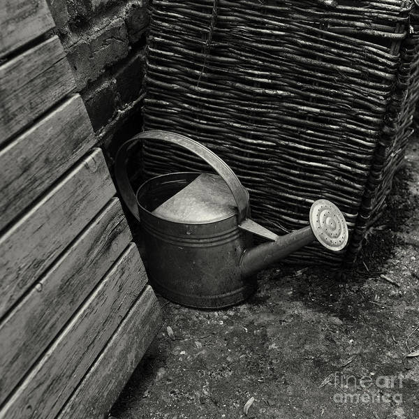 Photograph - Watering Can by Clayton Bastiani