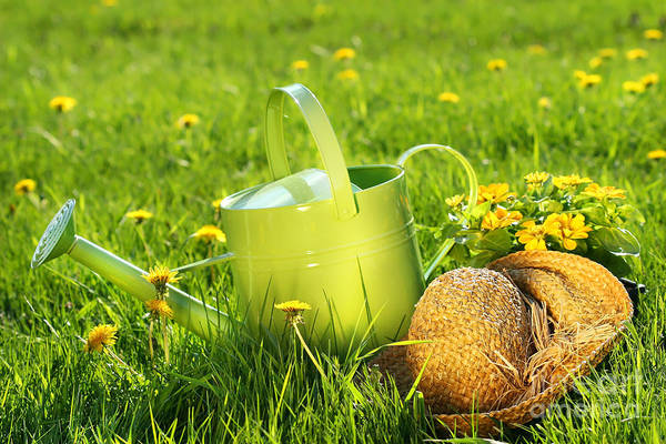 Wall Art - Digital Art - Watering Can In The Grass by Sandra Cunningham