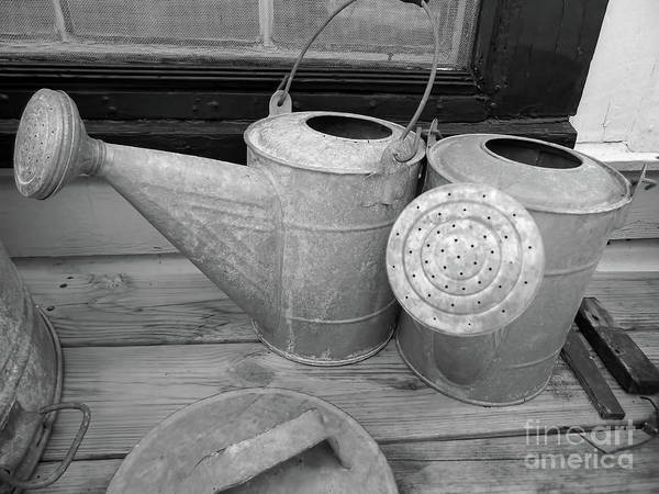 Photograph - Watering Cans And Tubs B  W by D Hackett
