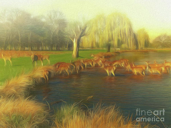 Photograph - Watering Hole by Leigh Kemp
