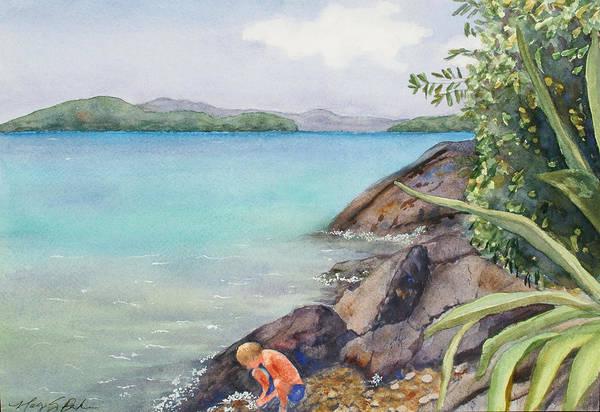 Us Virgin Islands Painting - Waterlemon Cay by Mary Benke