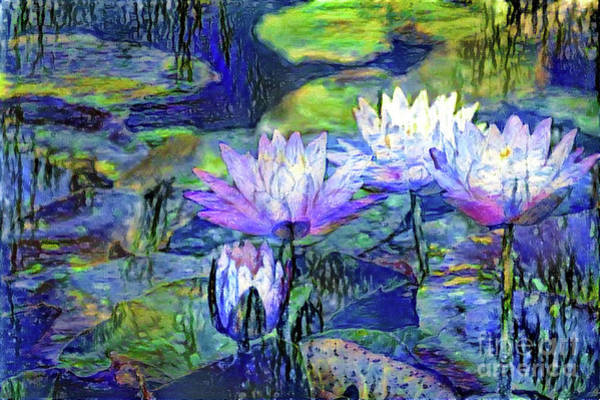 Lilly Pad Digital Art - Waterlilies 6 by Amy Cicconi