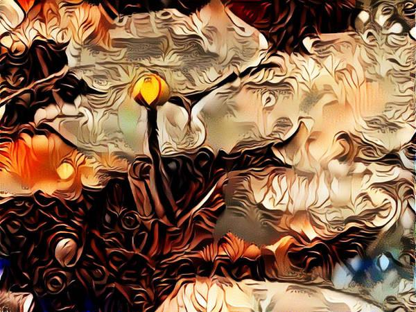 Digital Art - Waterlilies by Amanda Moore