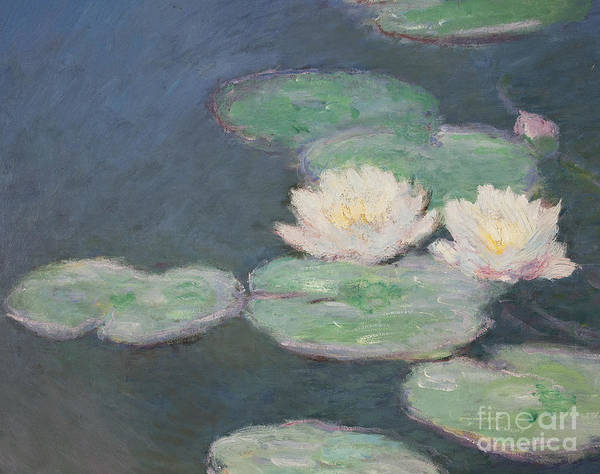 Close-up Painting - Waterlilies by Claude Monet