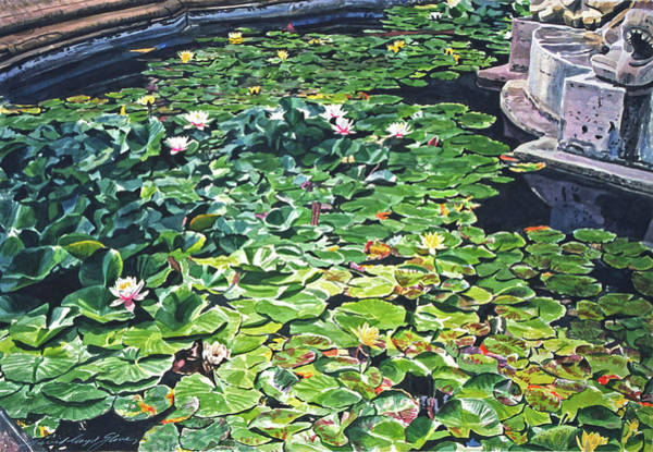 Painting - Waterlilies Huntington Fountain by David Lloyd Glover